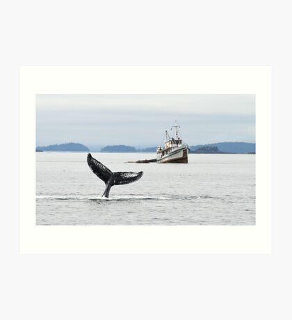 Whale #533  II Art Print