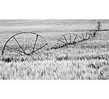 Country farm Photographic Print