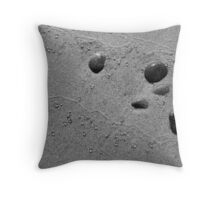 Beachscape Throw Pillow