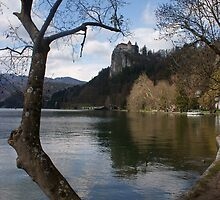 Lake Bled by dimitris