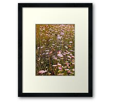 memories of meadows Framed Print