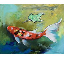 Zen Butterfly Koi Photographic Print