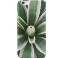 Agave sp. iPhone Case/Skin