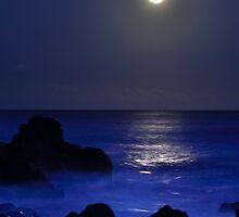 Moon rising-Minumarra NSW by Victor Sinden