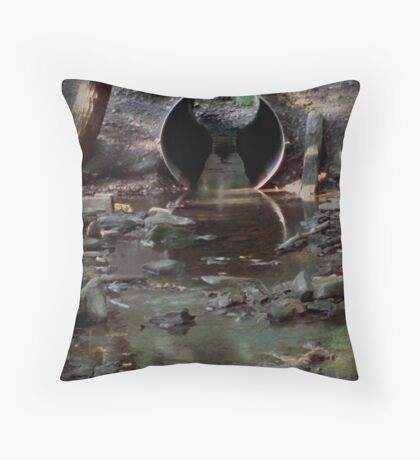 The Drain Pipe Throw Pillow