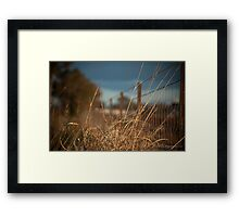 Grass infront of wire fence Framed Print