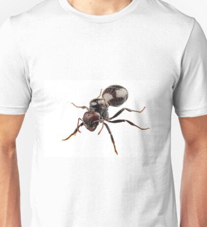 Black garden ant species Lasius niger Unisex T-Shirt