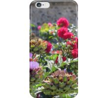Thistles and roses in France iPhone Case/Skin
