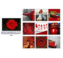 Love Red  The Most Popular Entry in This Challenge  Photographic Print