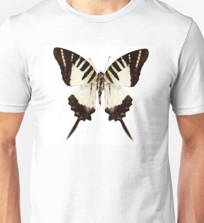 Butterfly species graphium decolor atratus Unisex T-Shirt
