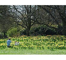 a family in the daffodils Photographic Print
