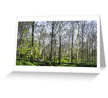 Farnley Woods Greeting Card