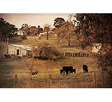 Rural Scene Photographic Print
