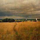 Path Across the Common by Nigel Bangert