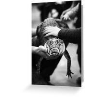 Reptile encounter Greeting Card