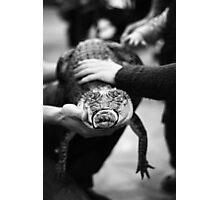 Reptile encounter Photographic Print
