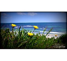 Beautiful beachscape Photographic Print