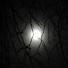 Full Moon by observer11