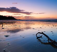 Florence Bay morning  by Michael Howard