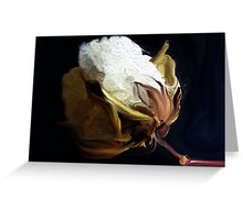 Raw  Cotton Greeting Card