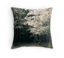 The Summer Lane  Throw Pillow