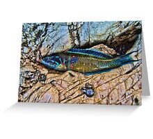 Coloured fish Greeting Card