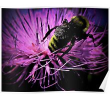 bee meets flower..get a piece of your action Poster