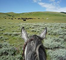 Passin' Through The Sagebrush by pmreed
