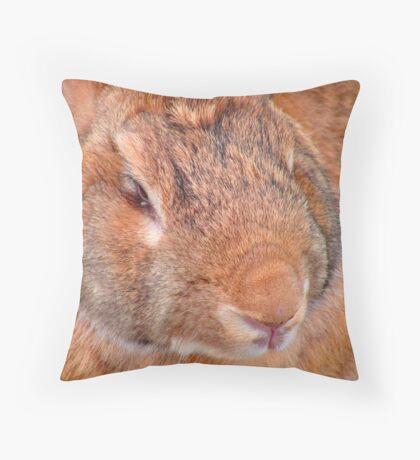 Big Bunny Throw Pillow