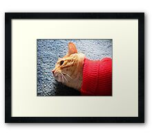 Red Sweater Framed Print