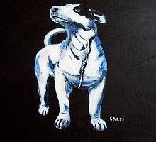 Chaos, Bull Terrier by Sue Nichol
