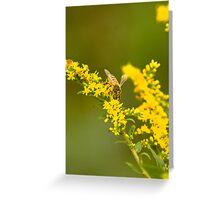 Pollen camo 2 Greeting Card