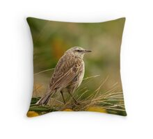 Campbell Island Pipit Throw Pillow