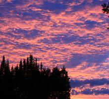 Sunrise in Nipigon by Alex Gomes