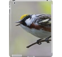 Chestnut-sided Warbler Singing iPad Case/Skin