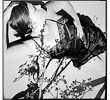 Sun/Shadow, Woman/Dream Photographic Print