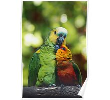 Parrothood Poster