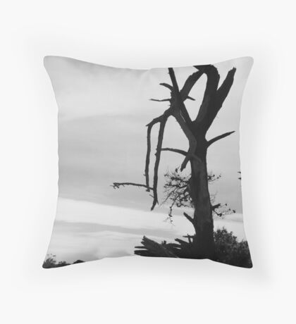 Desolation - Mornington Throw Pillow