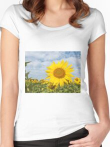 Sunflowers in a field Women's Fitted Scoop T-Shirt