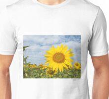 Sunflowers in a field Unisex T-Shirt