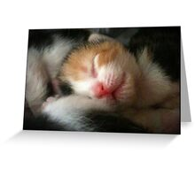 Sweet Dreams Child Greeting Card