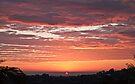Spring Sunrise, Terranora NSW by Odille Esmonde-Morgan