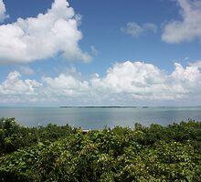 Key Largo by Alicia  Summerville