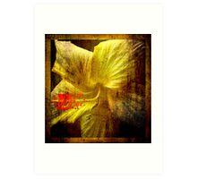 Manipulated Hibiscus. Art Print