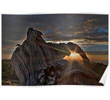 Sunrise Sunstar Poster