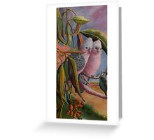 Amongst the Gum Nuts  Sold Greeting Card