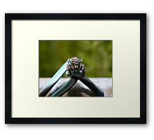 Are you threatening me? Framed Print