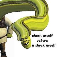 check urself before u shrek urself by Lutubert