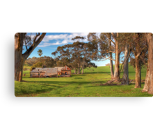 Down Among the Gum Trees Canvas Print
