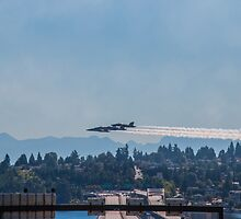 Flyover by Sue Morgan